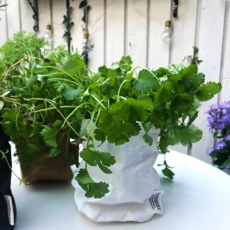 USHMAMA  vaskbar papaer bags, hvid str small